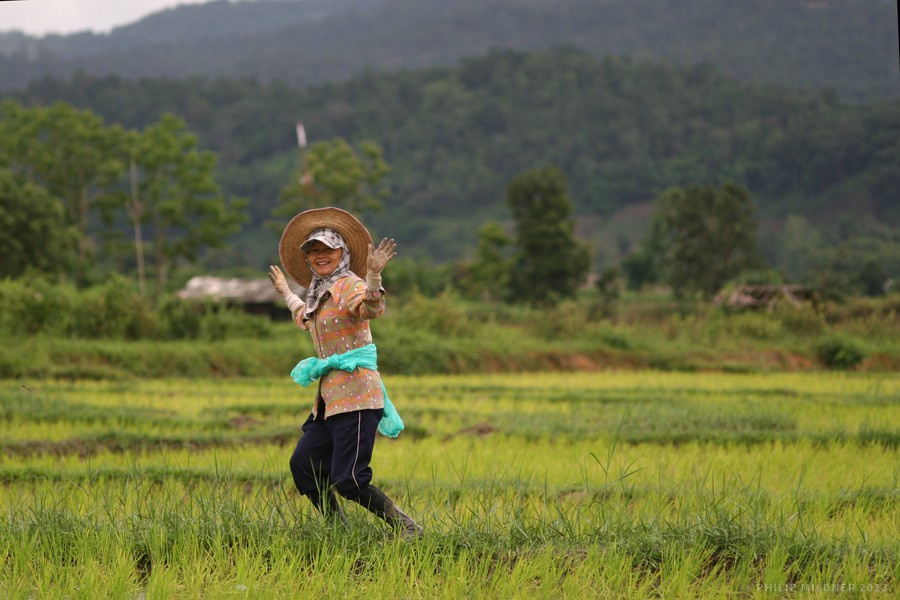 Today we helped the local villagers with planting rice. They seemed happy about our visit.